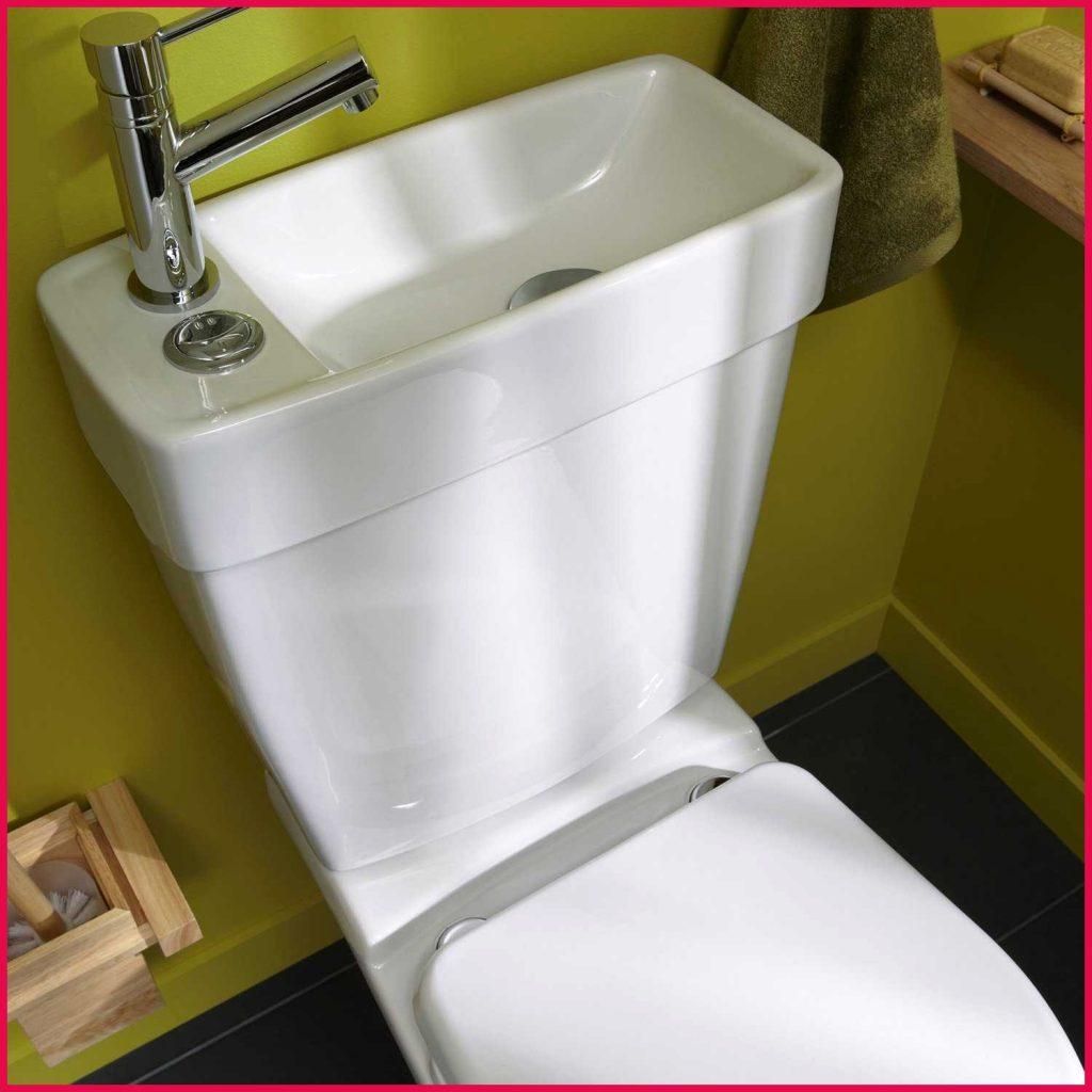Lunette des toilettes
